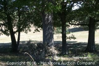 5.982 ± Acres with 124.9' ± Frontage on the Tennessee River