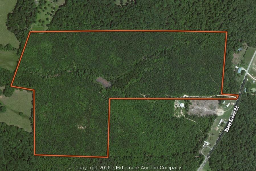 65.5± Acres in Decatur County, TN
